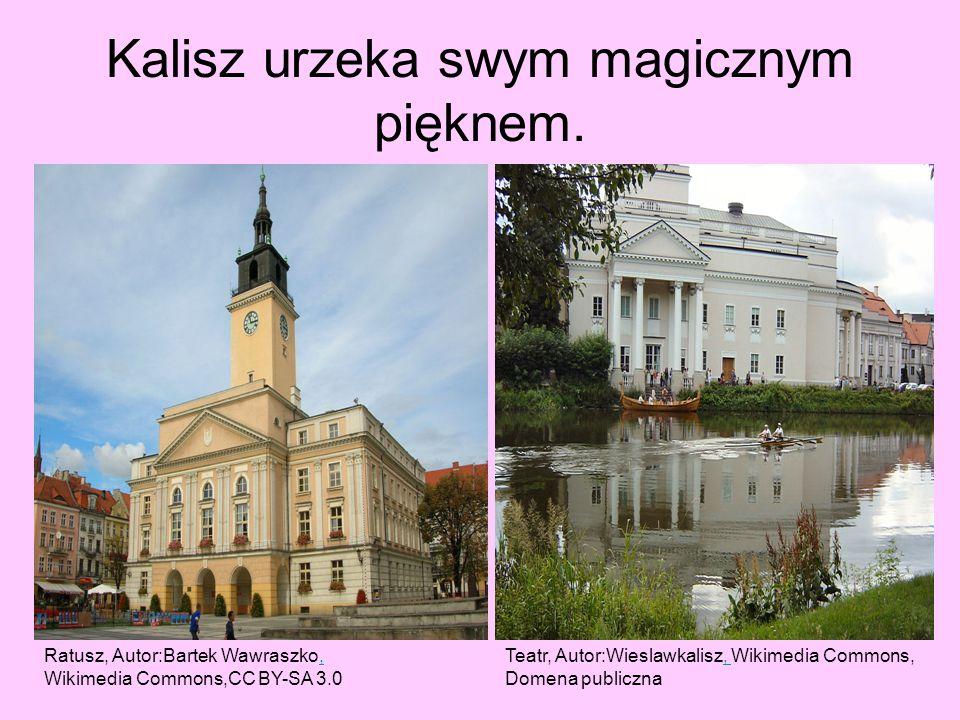 Kalisz urzeka swym magicznym pięknem. Ratusz, Autor:Bartek Wawraszko,, Wikimedia Commons,CC BY-SA 3.0 Teatr, Autor:Wieslawkalisz, Wikimedia Commons,,