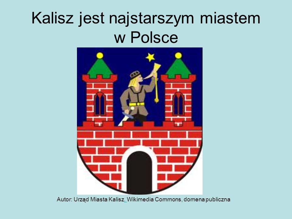 Kalisz jest najstarszym miastem w Polsce Autor: Urząd Miasta Kalisz, Wikimedia Commons, domena publiczna,
