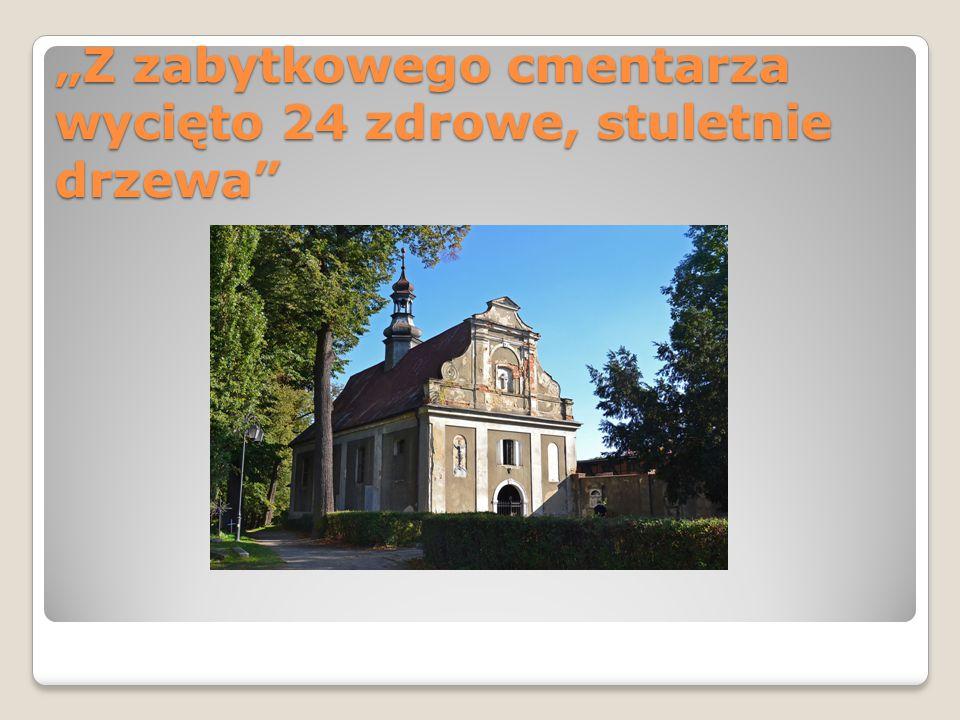 """""""Z zabytkowego cmentarza wycięto 24 zdrowe, stuletnie drzewa"""""""