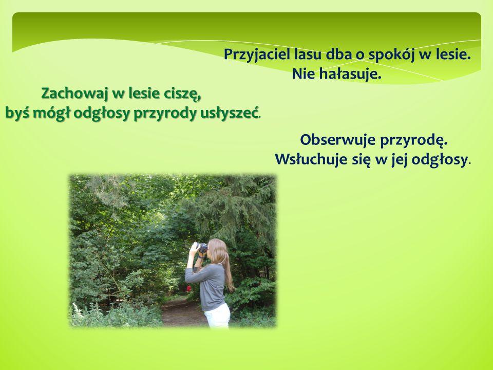 Przyjaciel lasu dba o spokój w lesie. Nie hałasuje. Obserwuje przyrodę. Wsłuchuje się w jej odgłosy. Zachowaj w lesie ciszę, Zachowaj w lesie ciszę, b