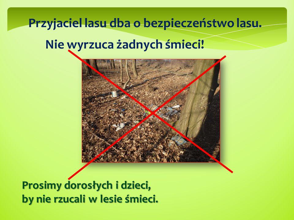Przyjaciel lasu dba o bezpieczeństwo lasu. Nie wyrzuca żadnych śmieci! Prosimy dorosłych i dzieci, by nie rzucali w lesie śmieci.