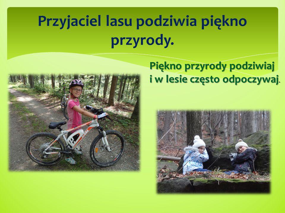 Przyjaciel lasu podziwia piękno przyrody. Piękno przyrody podziwiaj i w lesie często odpoczywaj.