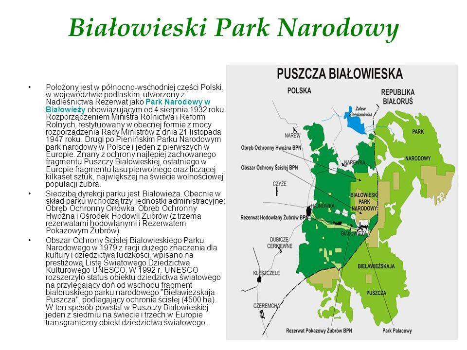 Położony jest w północno-wschodniej części Polski, w województwie podlaskim, utworzony z Nadleśnictwa Rezerwat jako Park Narodowy w Białowieży obowiąz