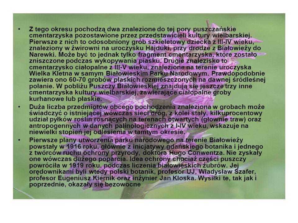 29 grudnia 1921 roku, na terenie Puszczy Białowieskiej, z inicjatywy i dzięki usilnym staraniom grona polskich przyrodników i leśników z profesorem Władysławem Szaferem na czele, Ministerstwo Rolnictwa i Dóbr Państwowych na mocy decyzji z 29 grudnia 1921 roku wydzieliło leśnictwo, które 13 kwietnia 1924 roku zostało podniesione do rangi nadleśnictwa o tej samej nazwie.