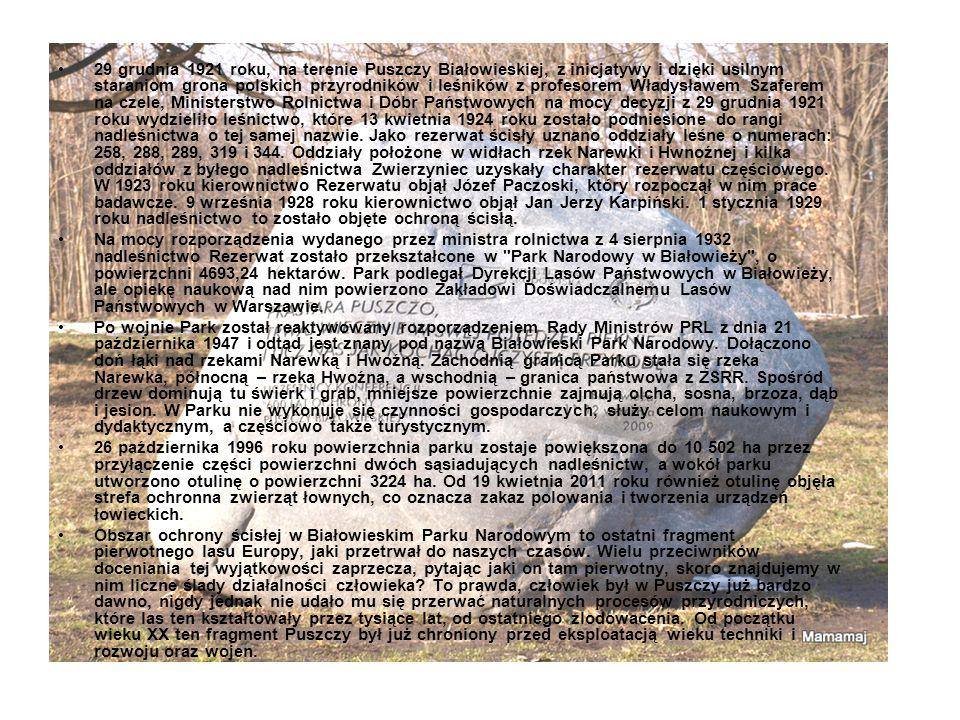 29 grudnia 1921 roku, na terenie Puszczy Białowieskiej, z inicjatywy i dzięki usilnym staraniom grona polskich przyrodników i leśników z profesorem Wł