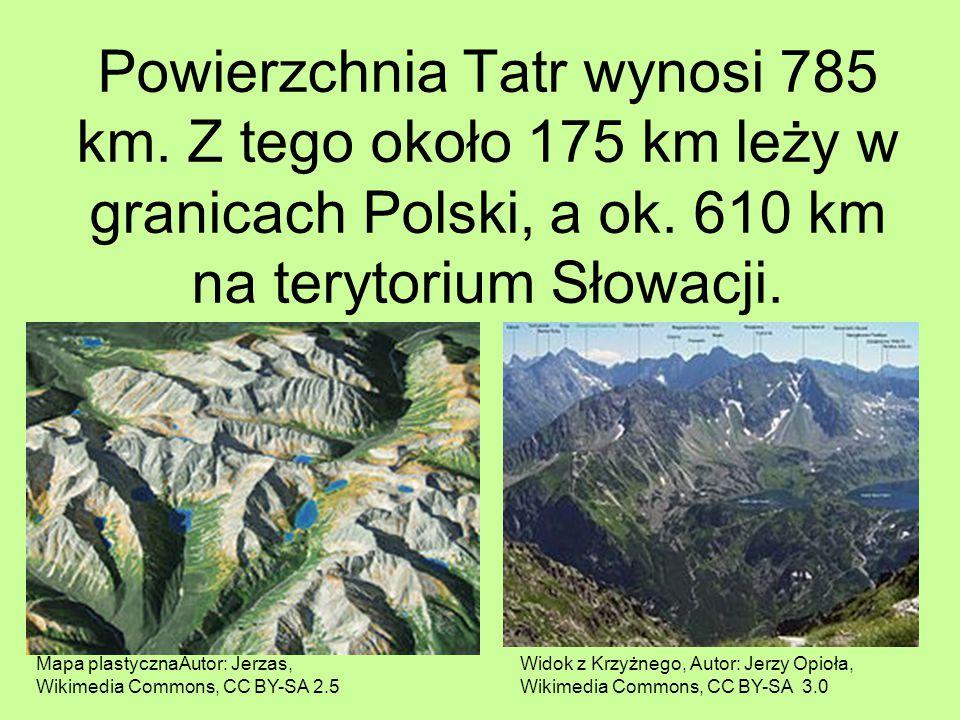 Powierzchnia Tatr wynosi 785 km. Z tego około 175 km leży w granicach Polski, a ok. 610 km na terytorium Słowacji. Widok z Krzyżnego, Autor: Jerzy Opi