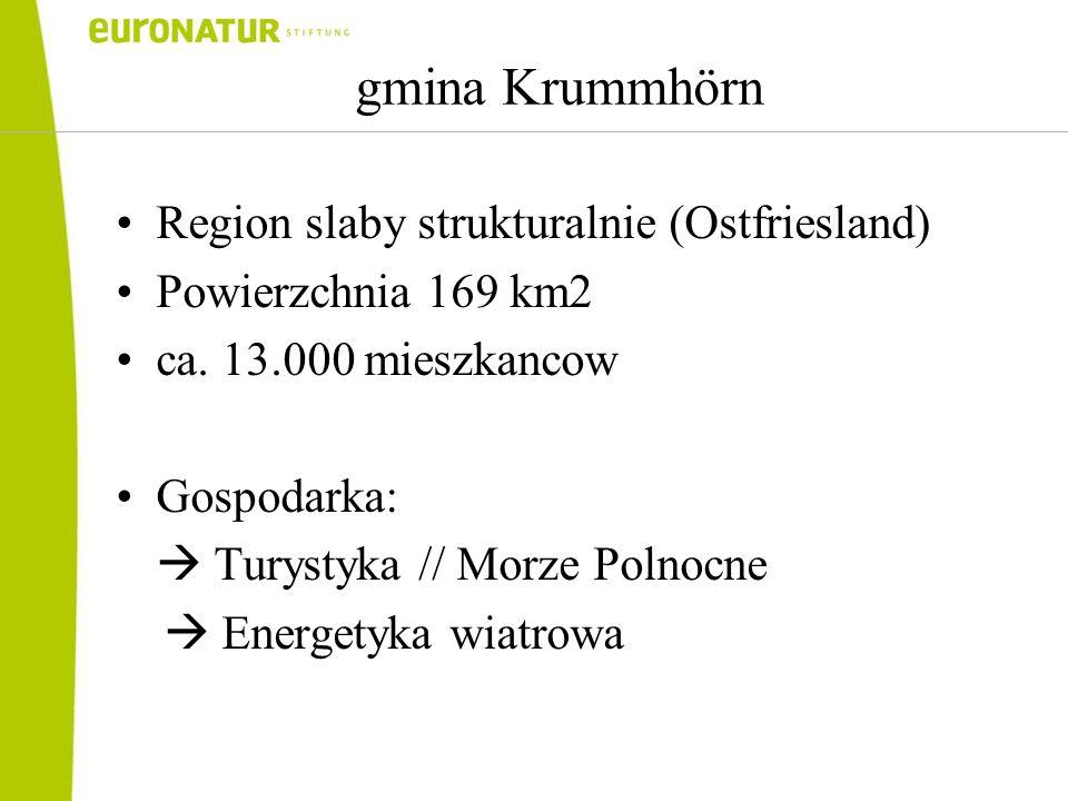 gmina Krummhörn Region slaby strukturalnie (Ostfriesland) Powierzchnia 169 km2 ca.