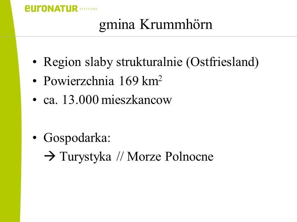 Region slaby strukturalnie (Ostfriesland) Powierzchnia 169 km 2 ca.
