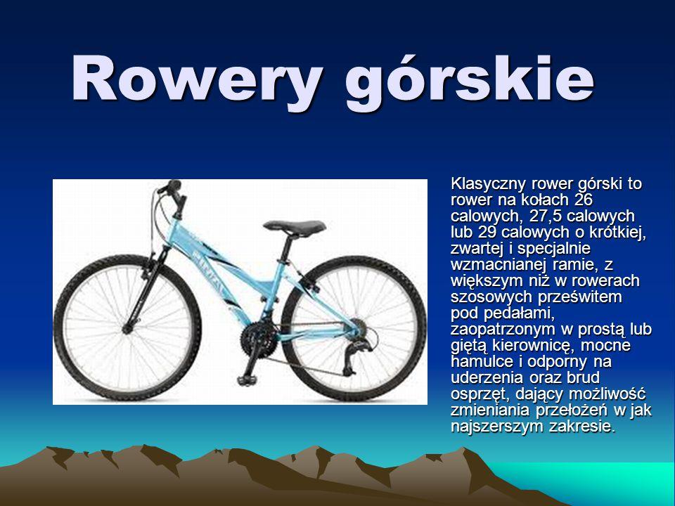Rowery miejskie Tradycyjny rower miejski, tzw.
