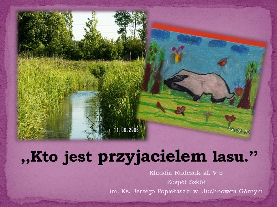 Klaudia Rudczuk kl. V b Zespół Szkół im. Ks. Jerzego Popiełuszki w Juchnowcu Górnym