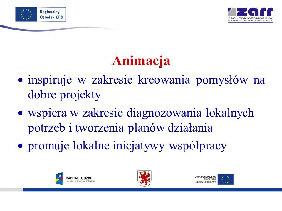 Animacja  inspiruje w zakresie kreowania pomysłów na dobre projekty  wspiera w zakresie diagnozowania lokalnych potrzeb i tworzenia planów działania  promuje lokalne inicjatywy współpracy