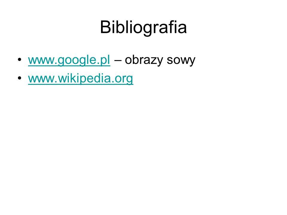 Bibliografia www.google.pl – obrazy sowywww.google.pl www.wikipedia.org