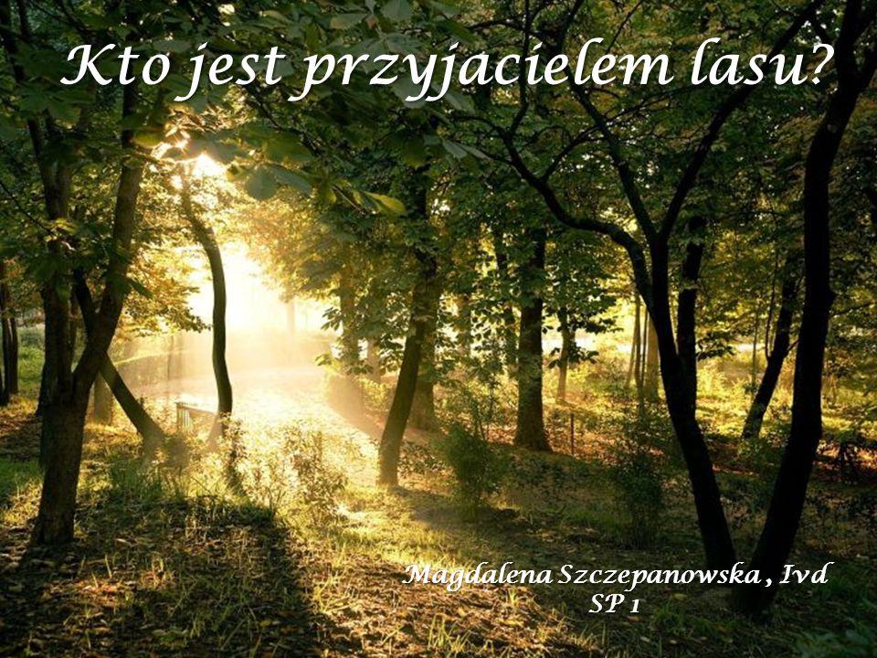 Kto jest przyjacielem lasu? Magdalena Szczepanowska, Ivd SP 1