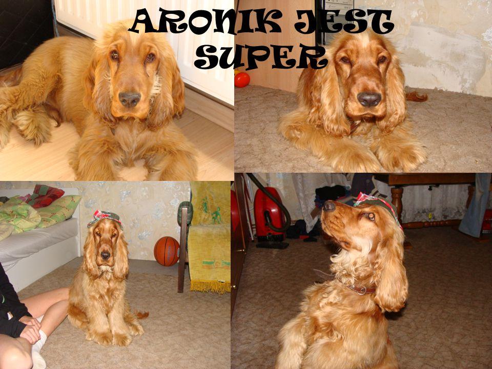 ARONIK JEST SUPER
