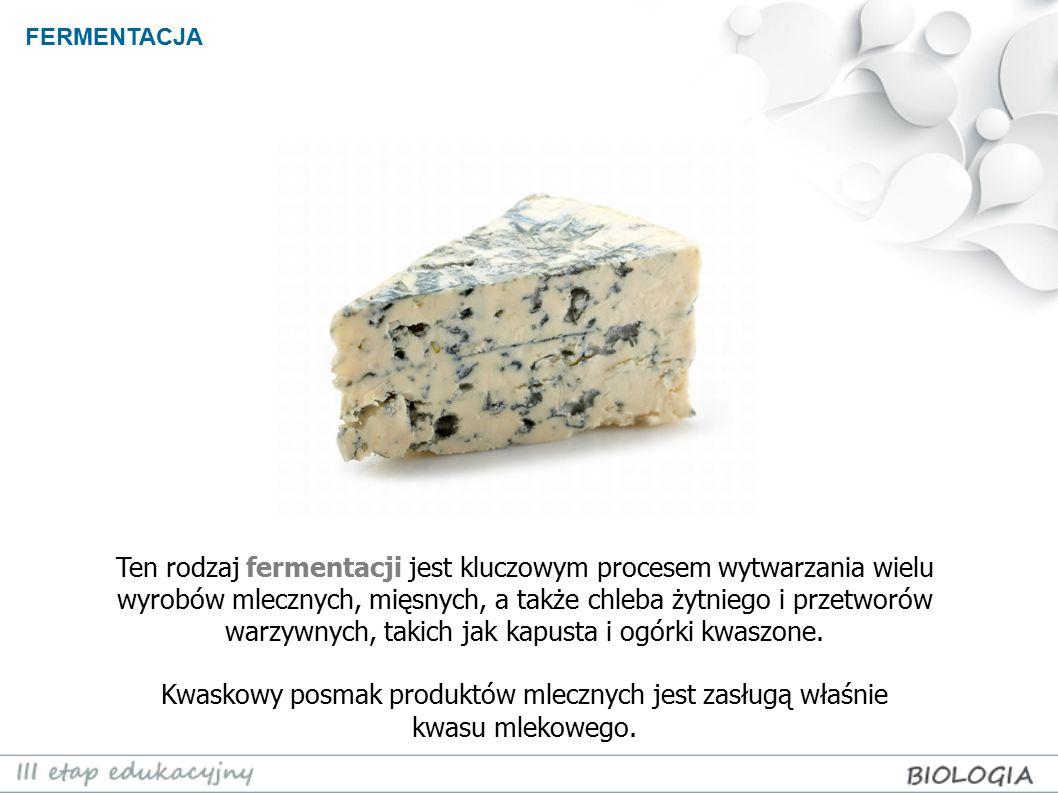 FERMENTACJA Ten rodzaj fermentacji jest kluczowym procesem wytwarzania wielu wyrobów mlecznych, mięsnych, a także chleba żytniego i przetworów warzywn