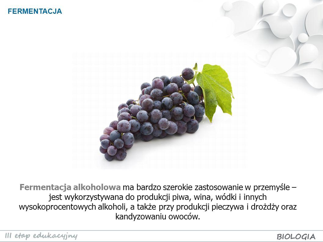 FERMENTACJA Fermentacja alkoholowa ma bardzo szerokie zastosowanie w przemyśle – jest wykorzystywana do produkcji piwa, wina, wódki i innych wysokopro