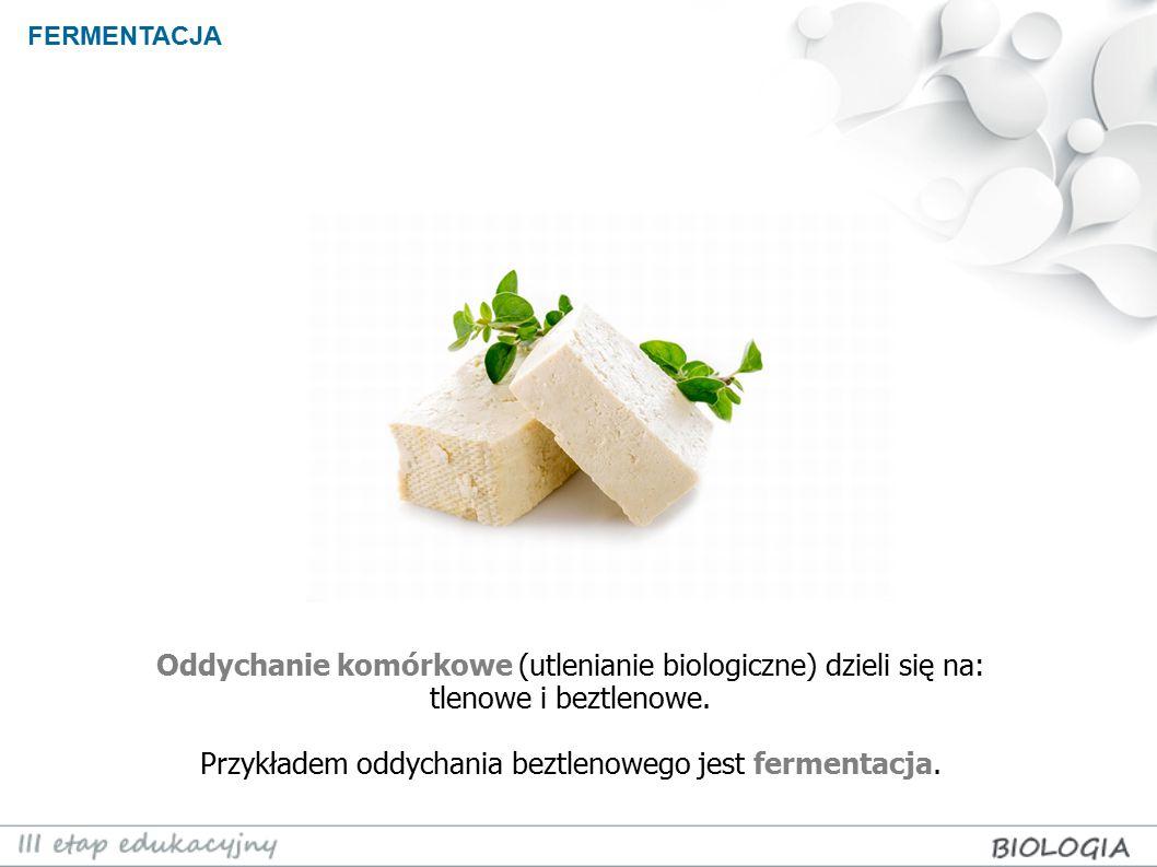 Oddychanie komórkowe (utlenianie biologiczne) dzieli się na: tlenowe i beztlenowe. Przykładem oddychania beztlenowego jest fermentacja. FERMENTACJA