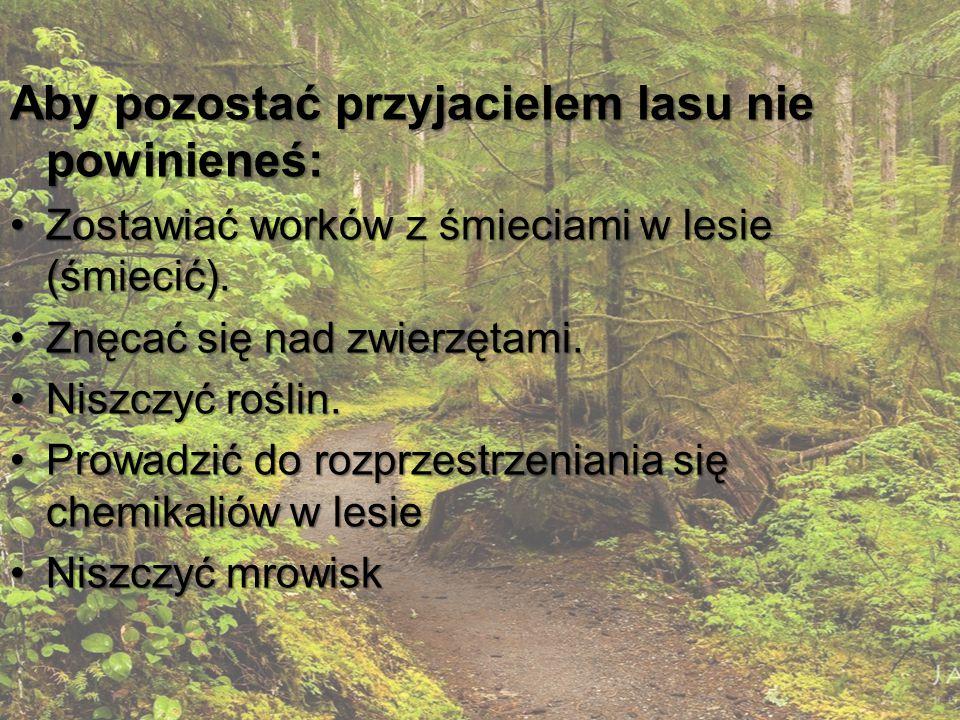 Aby pozostać przyjacielem lasu nie powinieneś: Zostawiać worków z śmieciami w lesie (śmiecić).Zostawiać worków z śmieciami w lesie (śmiecić).