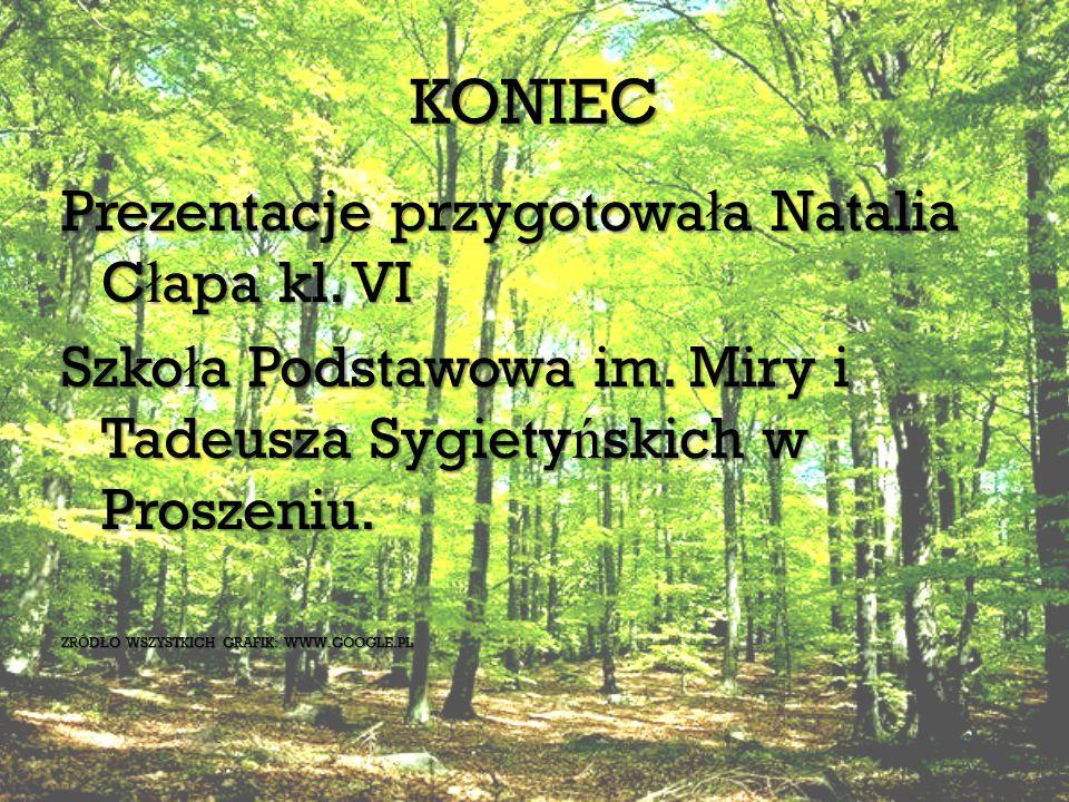 KONIEC Prezentacje przygotowa ł a Natalia C ł apa kl.