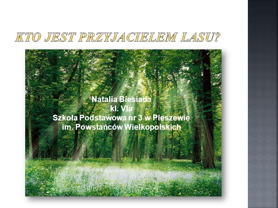 Natalia Biesiada kl. VIa Szkoła Podstawowa nr 3 w Pleszewie im. Powstańców Wielkopolskich