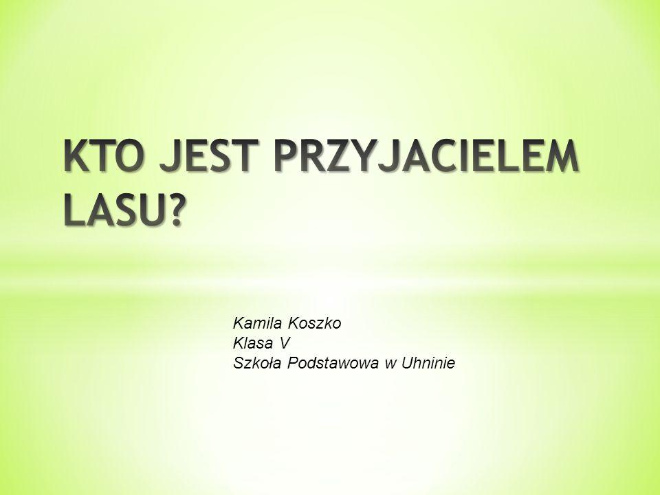 Kamila Koszko Klasa V Szkoła Podstawowa w Uhninie