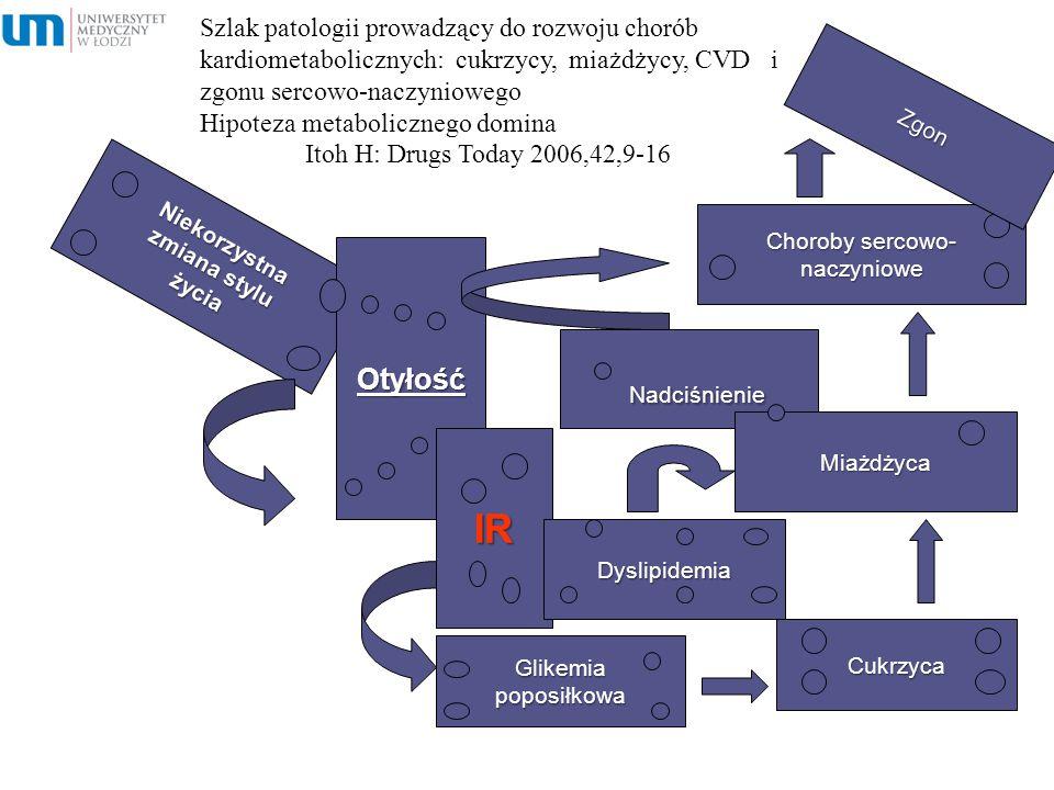 Szlak patologii prowadzący do rozwoju chorób kardiometabolicznych: cukrzycy, miażdżycy, CVD i zgonu sercowo-naczyniowego Hipoteza metabolicznego domin