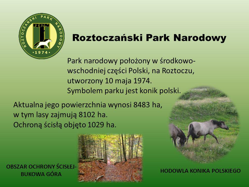 Roztoczański Park Narodowy Park narodowy położony w środkowo- wschodniej części Polski, na Roztoczu, utworzony 10 maja 1974. Symbolem parku jest konik