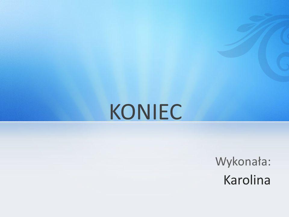 Wykonała: Karolina KONIEC