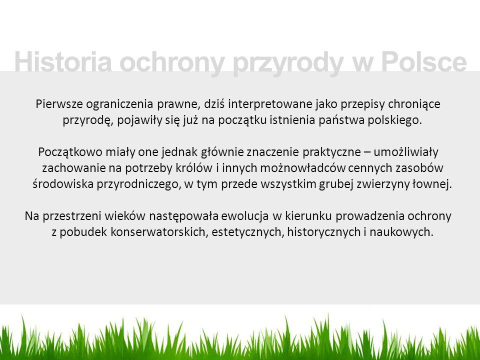 Pierwsze ograniczenia prawne, dziś interpretowane jako przepisy chroniące przyrodę, pojawiły się już na początku istnienia państwa polskiego. Początko