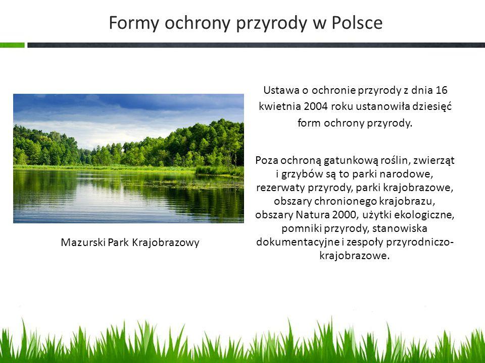 Poza ochroną gatunkową roślin, zwierząt i grzybów są to parki narodowe, rezerwaty przyrody, parki krajobrazowe, obszary chronionego krajobrazu, obszar