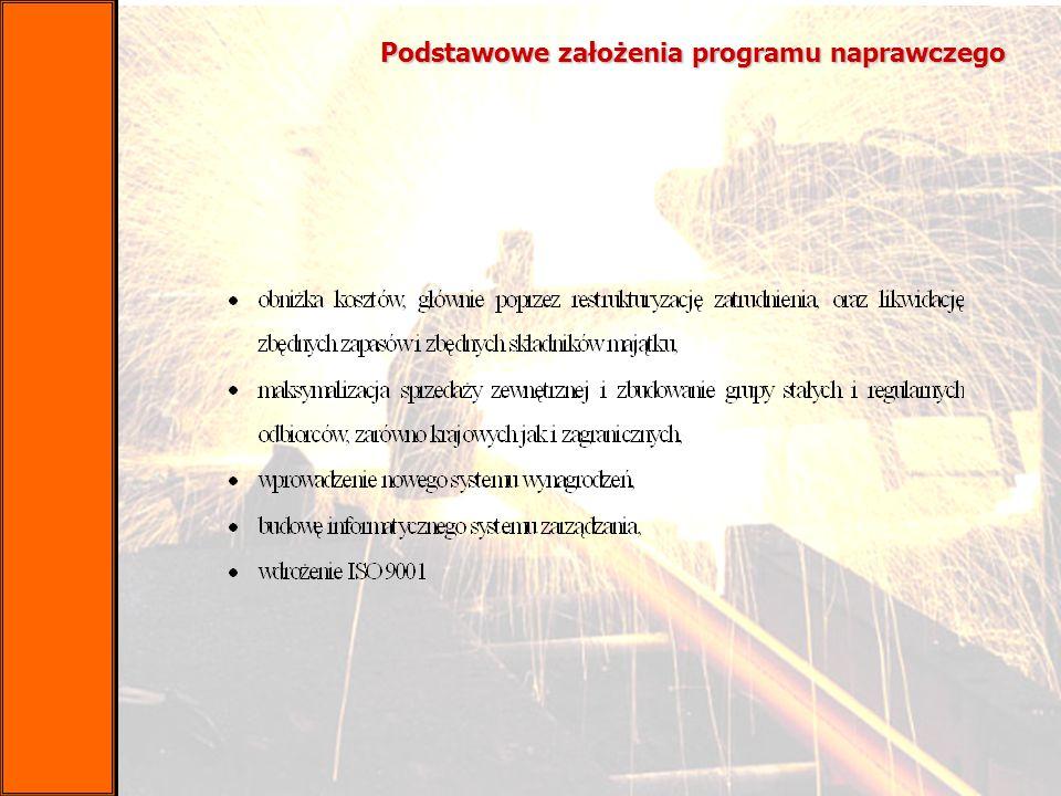 Podstawowe założenia programu naprawczego