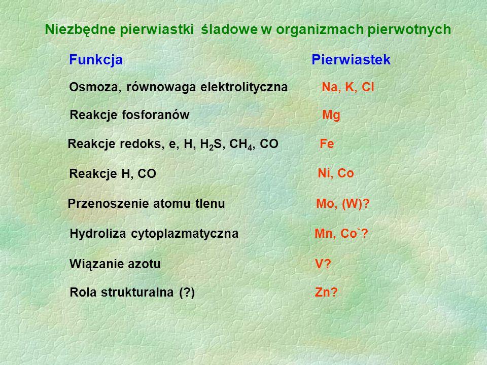 Niezbędne pierwiastki śladowe w organizmach pierwotnych Funkcja Pierwiastek Osmoza, równowaga elektrolityczna Na, K, Cl Reakcje fosforanów Mg Reakcje