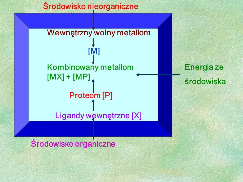 Środowisko nieorganiczne Energia ze środowiska Środowisko organiczne Wewnętrzny wolny metallom [M] Proteom [P] Ligandy wewnętrzne [X] Kombinowany meta