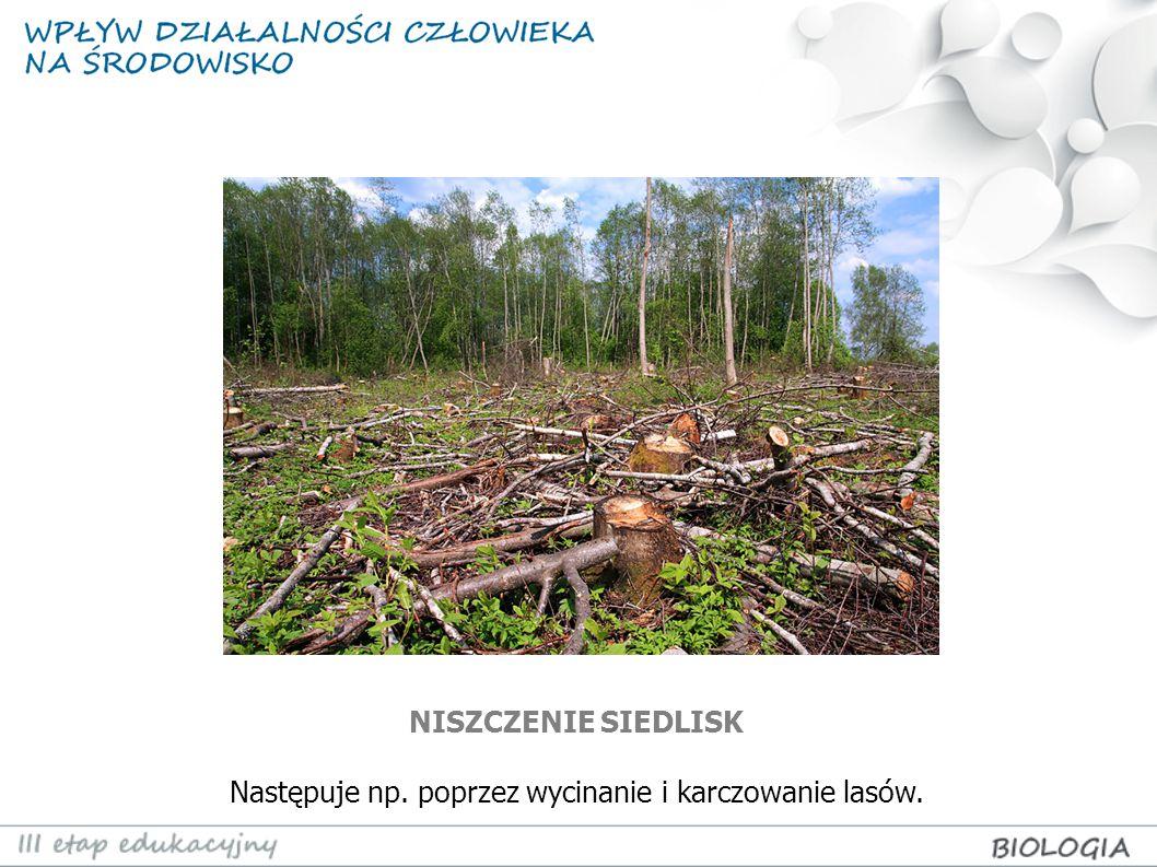 PRZEKSZTAŁCANIE SIEDLISK W TERENY ROLNICZE Następuje poprzez wycinanie lasów, osuszanie terenów podmokłych itp.