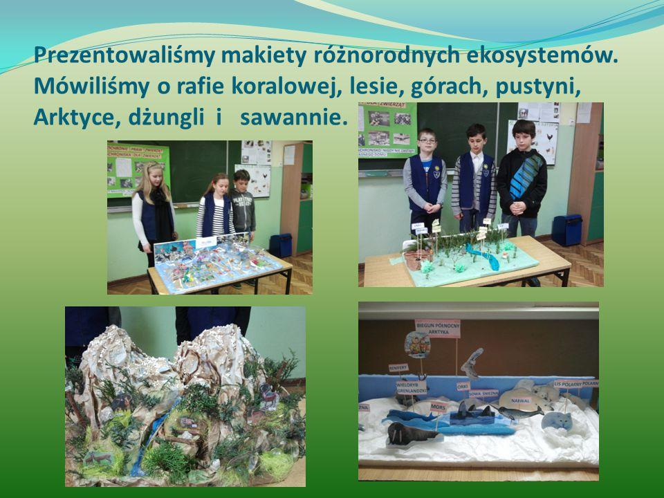Prezentowaliśmy makiety różnorodnych ekosystemów.