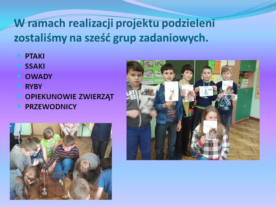W ramach realizacji projektu podzieleni zostaliśmy na sześć grup zadaniowych.
