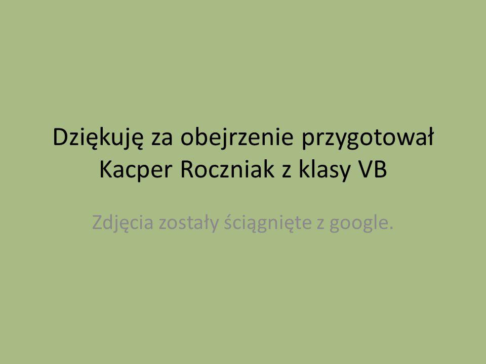 Dziękuję za obejrzenie przygotował Kacper Roczniak z klasy VB Zdjęcia zostały ściągnięte z google.
