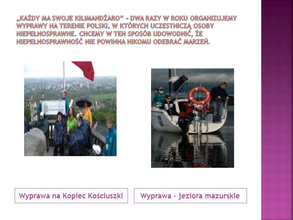 Inicjatywa własna Zespołu Szkół Specjalnych nr 3 w Bytomiu w ramach Partnerskie Projekty szkół Comenius – organizacja kiermaszu bożonarodzeniowego i zbiórka pieniędzy na cele charytatywne.