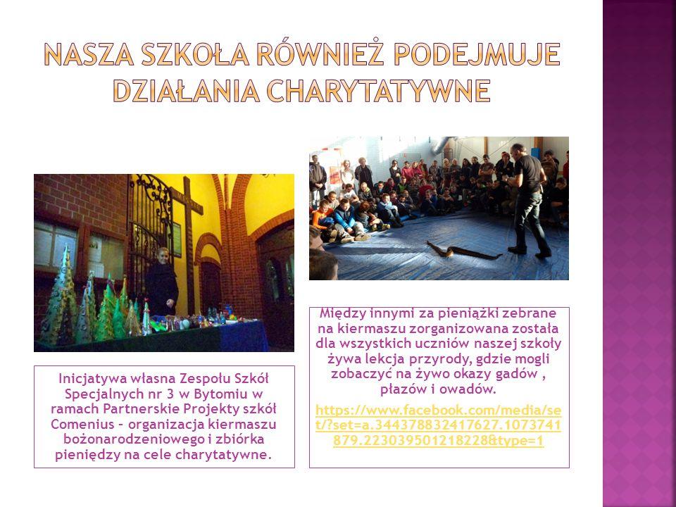 Inicjatywa własna Zespołu Szkół Specjalnych nr 3 w Bytomiu w ramach Partnerskie Projekty szkół Comenius – organizacja kiermaszu bożonarodzeniowego i z