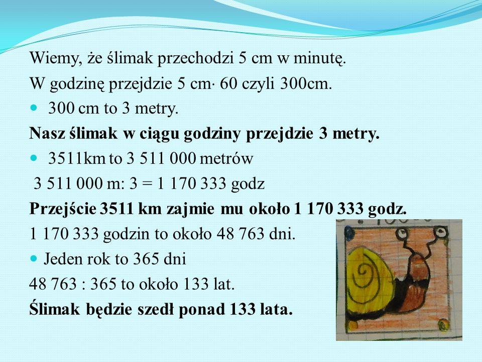 Wiemy, że ślimak przechodzi 5 cm w minutę. W godzinę przejdzie 5 cm  60 czyli 300cm. 300 cm to 3 metry. Nasz ślimak w ciągu godziny przejdzie 3 metry