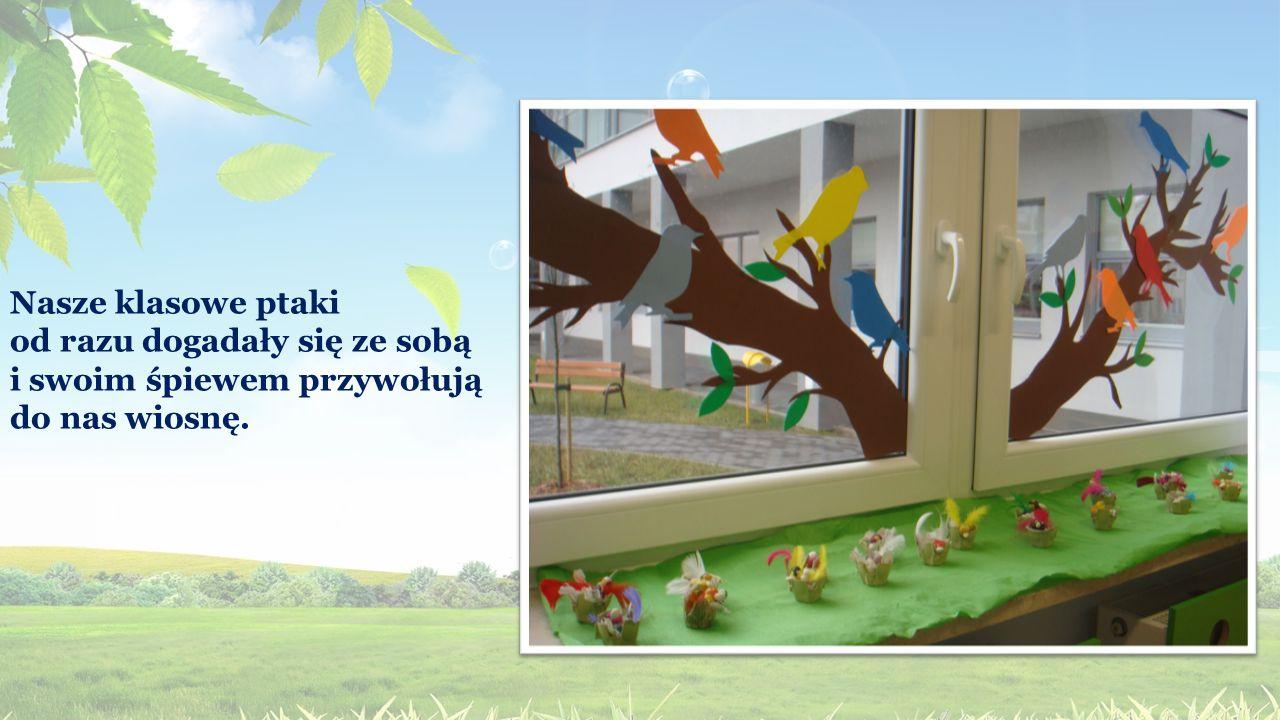 Nasze klasowe ptaki od razu dogadały się ze sobą i swoim śpiewem przywołują do nas wiosnę.
