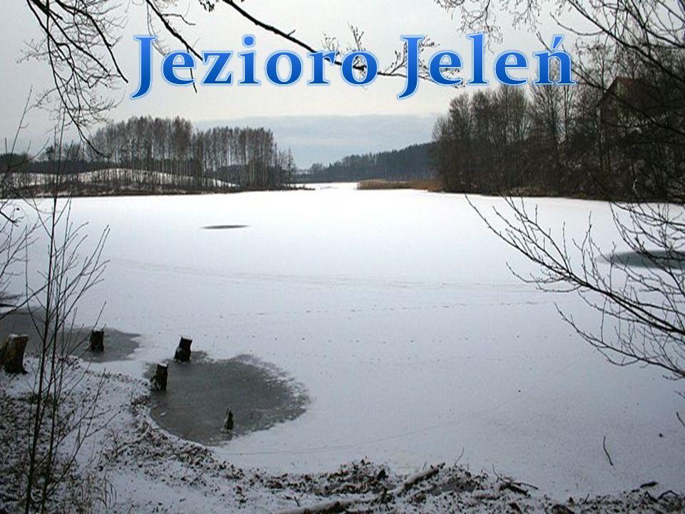 Pojezierze Kaszubskie Na terenie Pojezierza Kaszubskiego jest wiele pięknych i malowniczych jezior, między innymi: Jezioro Jeleń, Raduńskie, Białe, Os