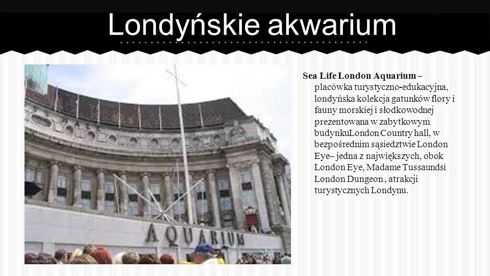 Londyńskie akwarium Sea Life London Aquarium – placówka turystyczno-edukacyjna, londyńska kolekcja gatunków flory i fauny morskiej i słodkowodnej prezentowana w zabytkowym budynkuLondon Country hall, w bezpośrednim sąsiedztwie London Eye– jedna z największych, obok London Eye, Madame Tussaundsi London Dungeon, atrakcji turystycznych Londynu.