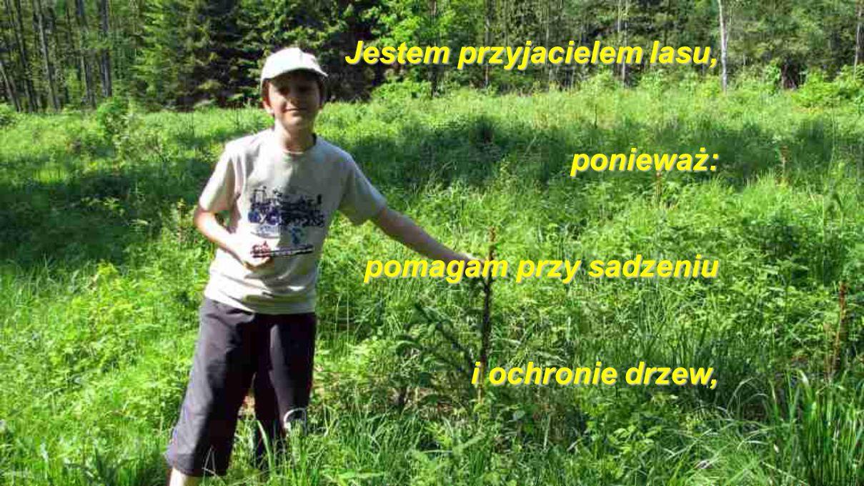 J JJ Jestem przyjacielem lasu, ponieważ: pomagam przy sadzeniu i ochronie drzew,