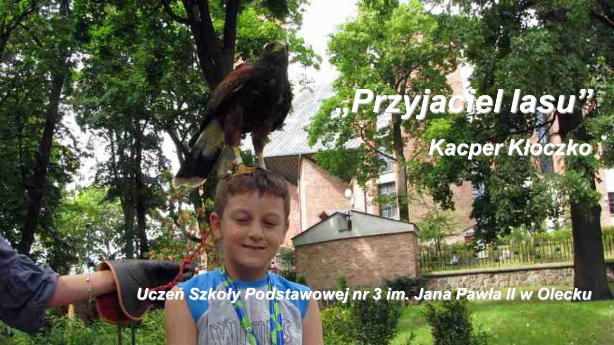"""""""Przyjaciel lasu"""" Kacper Kłoczko Uczeń Szkoły Podstawowej nr 3 im. Jana Pawła II w Olecku"""