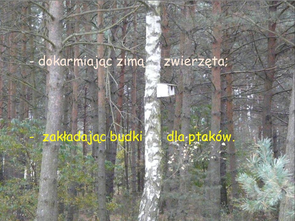 Przyjaciel musi upominać innych, żeby : Nie śmiecili w lesie.