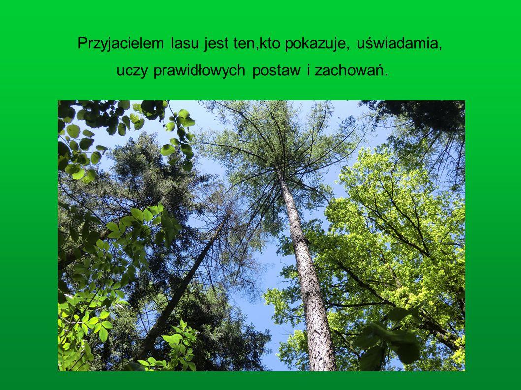 Przyjacielem lasu jest ten,kto pokazuje, uświadamia, uczy prawidłowych postaw i zachowań.