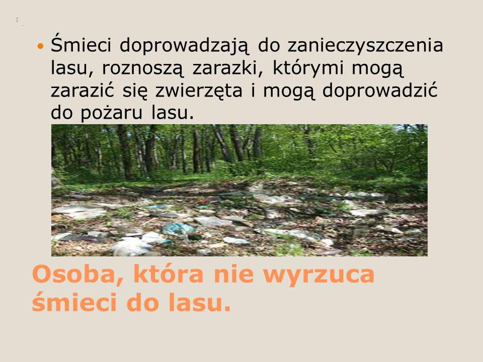 Osoba, która nie wyrzuca śmieci do lasu. Śmieci doprowadzają do zanieczyszczenia lasu, roznoszą zarazki, którymi mogą zarazić się zwierzęta i mogą dop