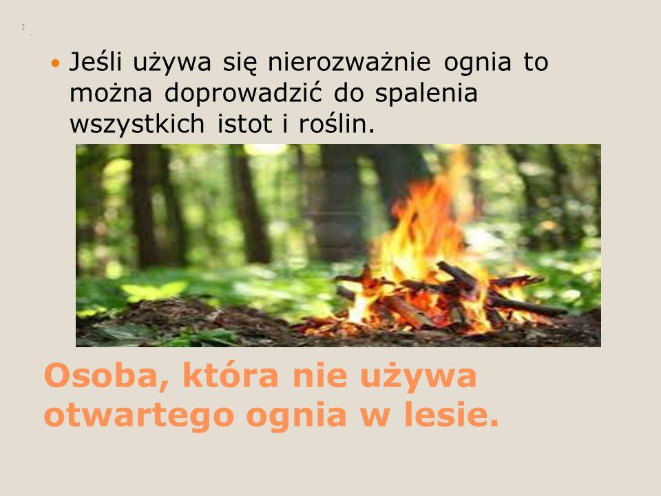 Osoba, która nie używa otwartego ognia w lesie. Jeśli używa się nierozważnie ognia to można doprowadzić do spalenia wszystkich istot i roślin.