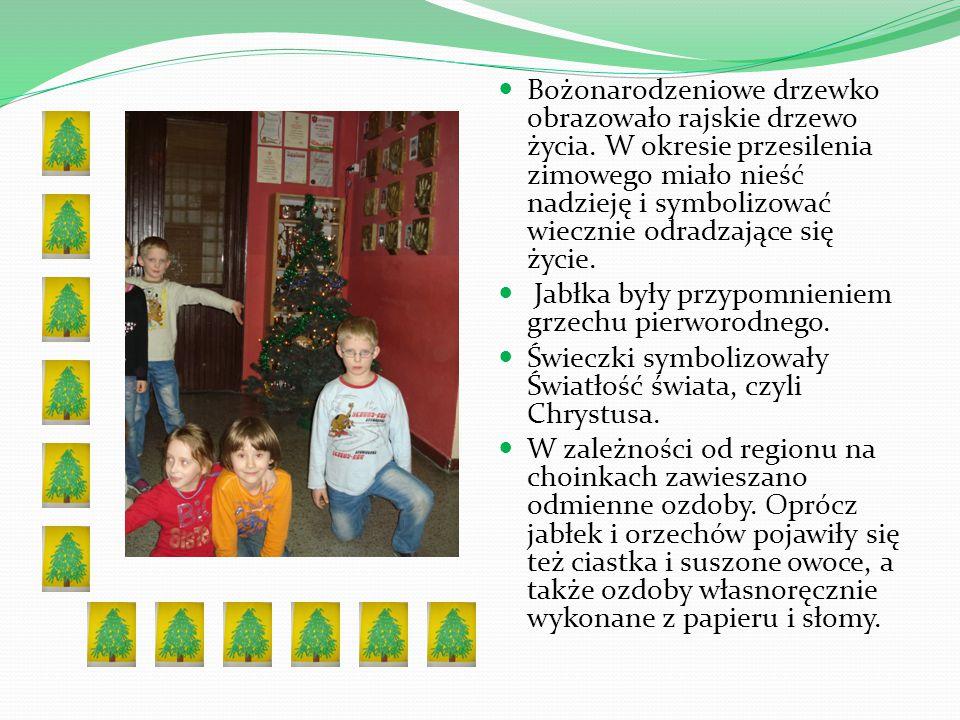 Bożonarodzeniowe drzewko obrazowało rajskie drzewo życia. W okresie przesilenia zimowego miało nieść nadzieję i symbolizować wiecznie odradzające się